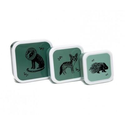 Lunch Box Animal Set de 3